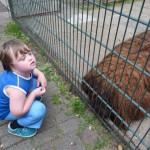 Giorgio im Tierpark