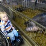 Marius beim Wollschwein